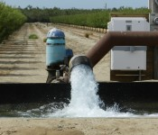 July 14, Oakdale Irrigation District (OID) General Manager Steve Knell circulated a letter defending the district's business plan. OID is embroiled in a lawsuit involving the California Environmental Quality Act […]