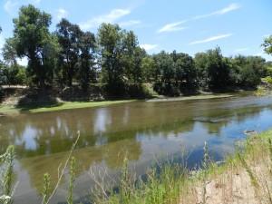 Tuolumne River Near Modesto