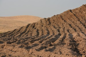 Ripped Soil. Eastern Stanislaus County. August 6 2014