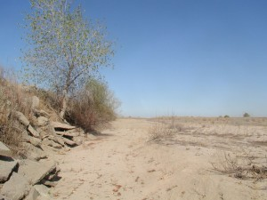 San Joaquin River, summer, 2009