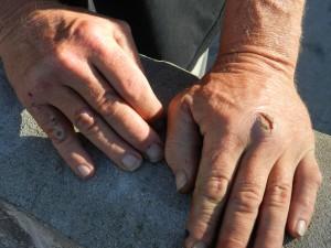 Scottie's hands