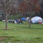Homeless: A Scenic Alternative