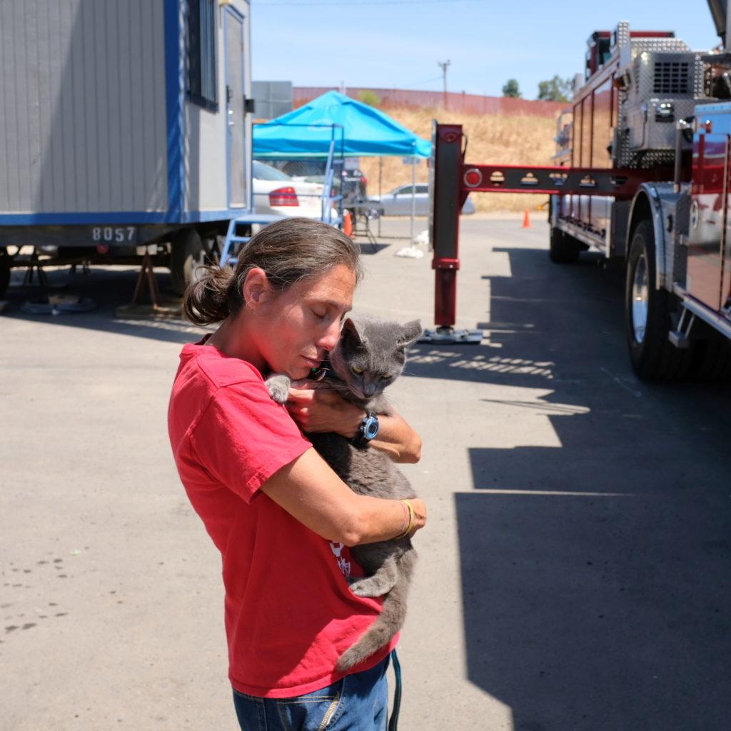 Owner hugs rescued cat