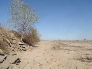 San Joaquin River, summer 2009