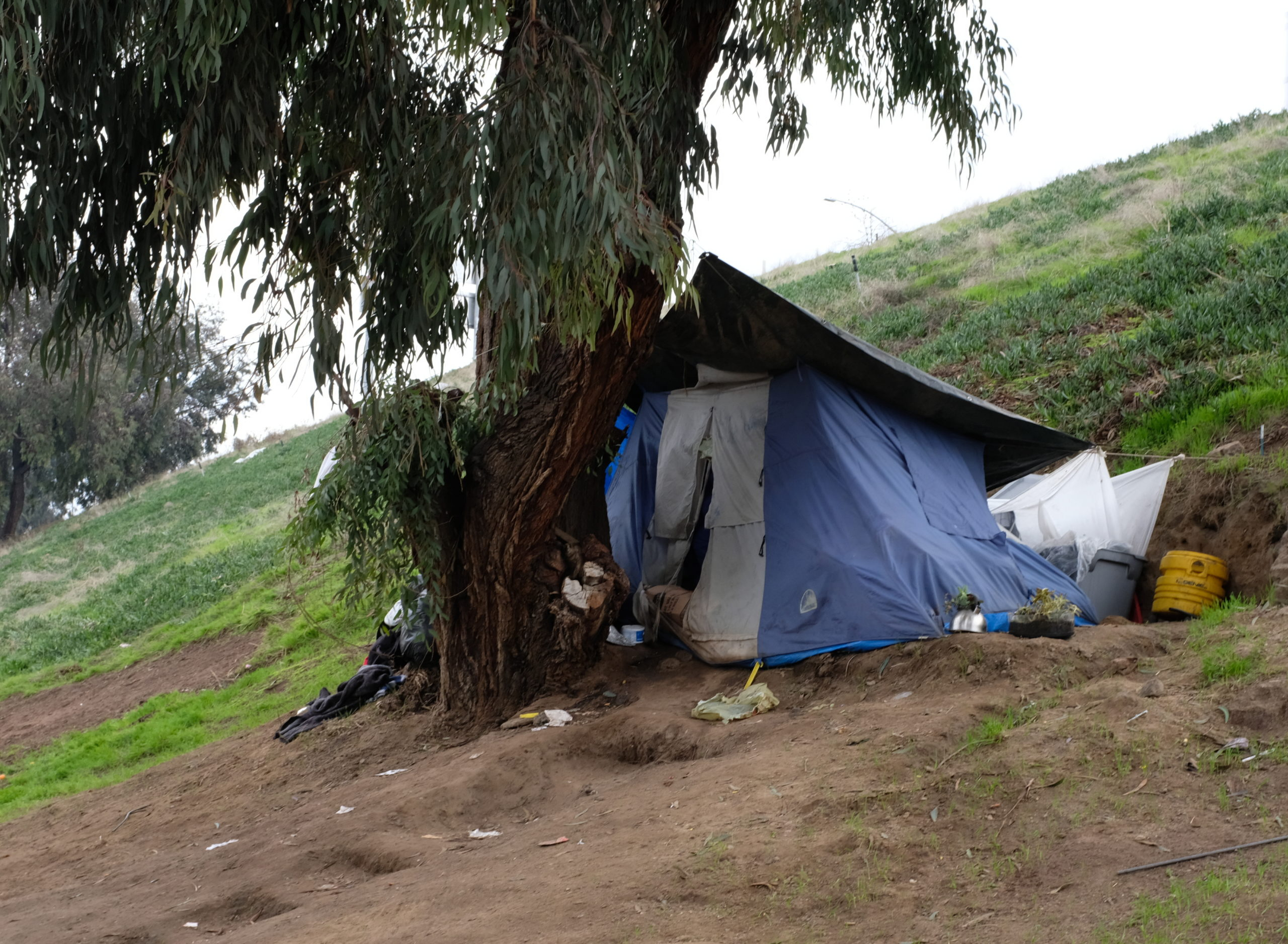 Newsom faces facts: Time to set up the tents