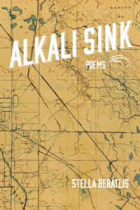 Alkali Sink cover