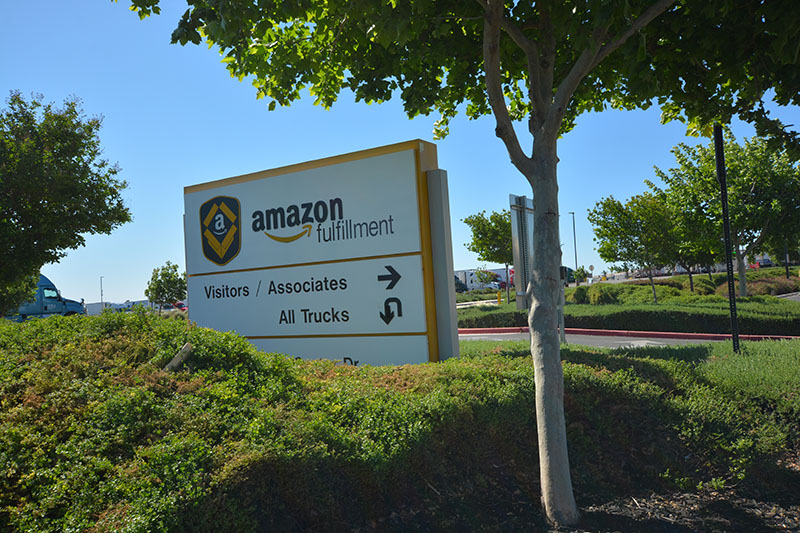 Amazon Patterson